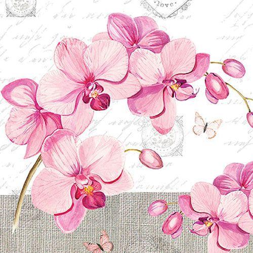 Papier-Serviette Orchideen rosa